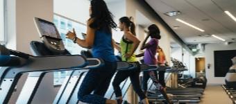 Treadmill Training Tips