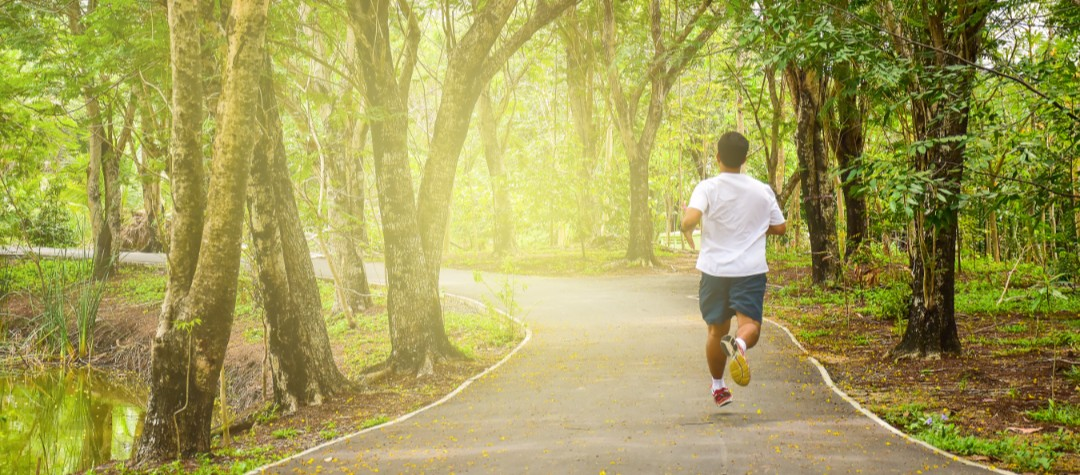 Training Plan For Complete Running Beginners