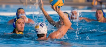 The Rules Of Water Polo