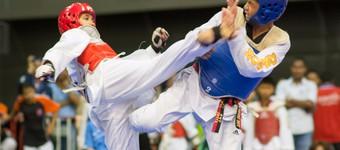 Introduction To Taekwondo