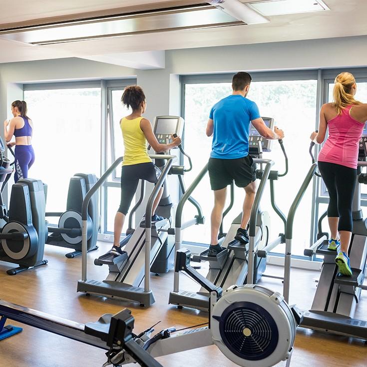 Gym & Workouts