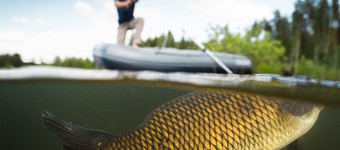 Top 10 Tips For Starting Out In Coarse Fishing