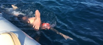Tips For The Open Water Advanced Swimmer