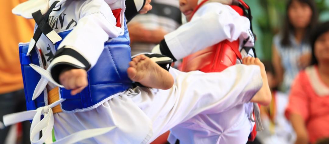 Taekwondo Terms Explained