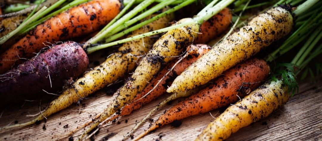 The Pros And Cons Of Organic Food