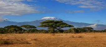 Kilimanjaro Trekking Experience