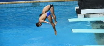 How Scoring Works In Diving