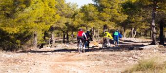 The Benefits Of Mountain Biking