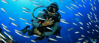 Scuba Diving FAQs