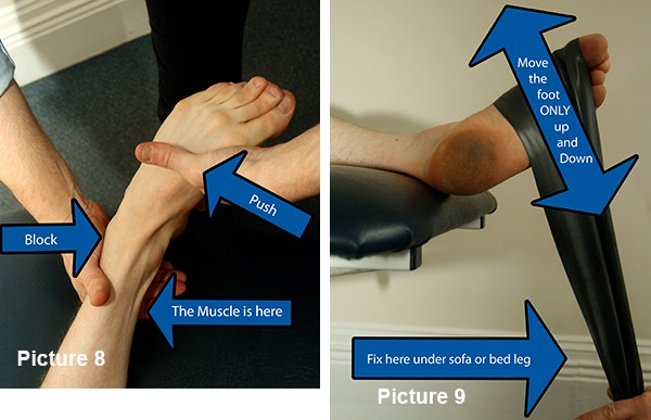 Tibialis posterior weakness test and strength work